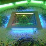 Скляна підлога (5)